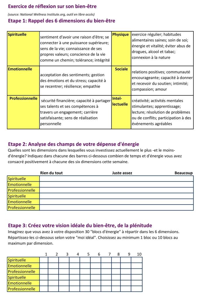 grille-d-auto-analyse-bien-c3aatre-page-001-1.jpg